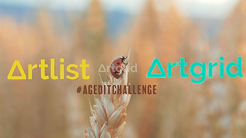 Artlist Video Competition