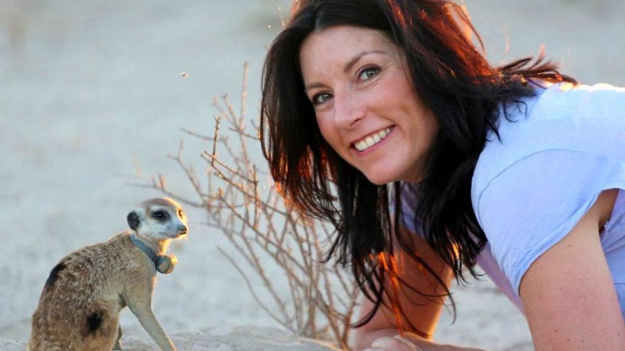 Talk to the animals - BBC2