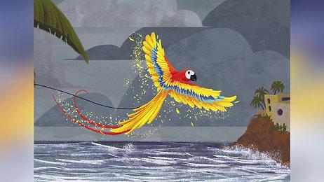 Mr. Macaw Book Promo