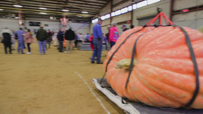 Anna Rossi takes us to the Topsfield Fair