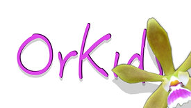 Orkids logo Animation