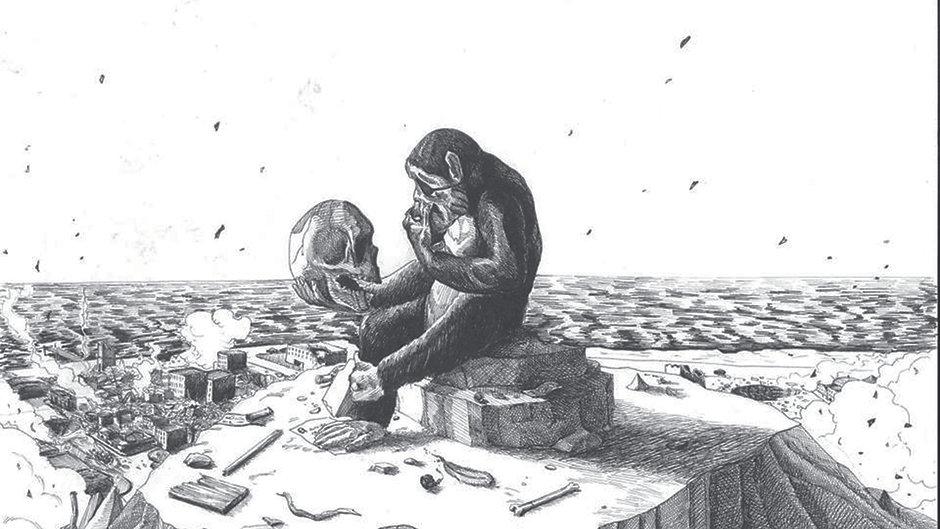 PrimateTV