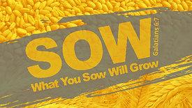 Sowing Seeds of Service - September 1, 2019