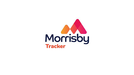 Morrisby Tracker Overview