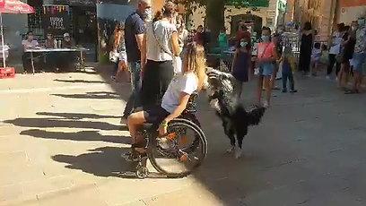 SPY pousse le fauteuil roulant