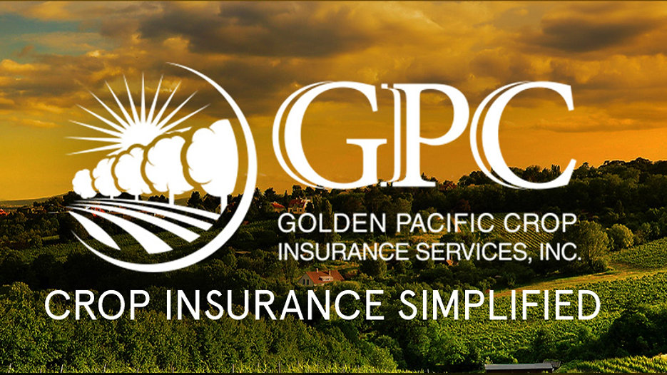 GPC Video