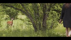 Living Meadow