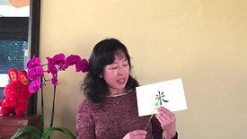 田旗老师讲植物