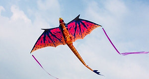 Giant 3D Dragon