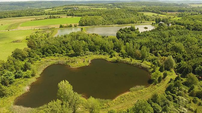 Sunny September Day Perfect for Shinrin Yoku at Shamrock Lakes LC