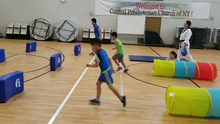 Central Taekwondo Academy Demo Class