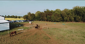 Once Upon A Time- All Event Planning and Equine Center