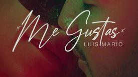Me Gustas - Luis Mario (Official Video)