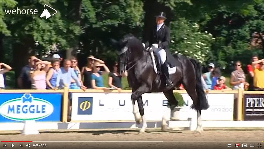 Der richtige Umgang mit dem Pferd | Uta Gräf
