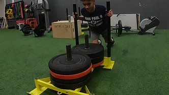 Sled And Step-up Superset