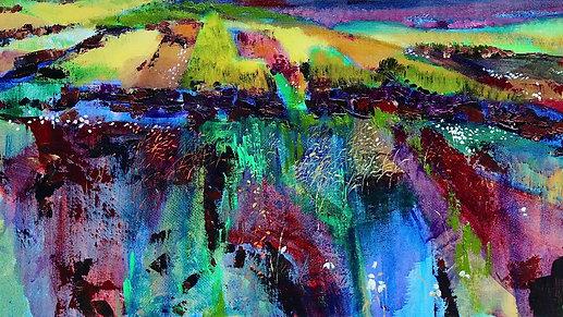 "Resilience through colour: Part I ""Bogs"""