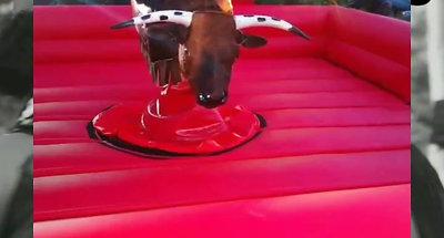 C&P Bull & Party Rentals