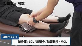 膝関節前十字靭帯損傷