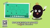 75. Fermented Soybean