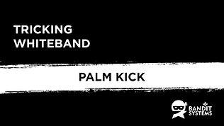 6. Palm kick