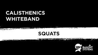 8. Squats