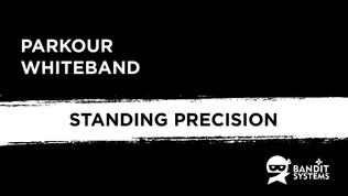 1. Standing Precision
