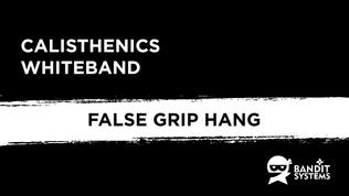 2. False-grip Hang