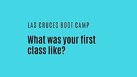 Ligia First Class