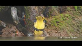 Sony India TVC Discover Wildlife with Sony Alpha.