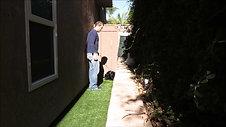 Potty Training: Outdoor