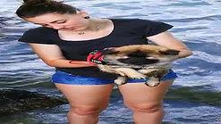 Ayko macht Schwimmübungen am Hallwilersee