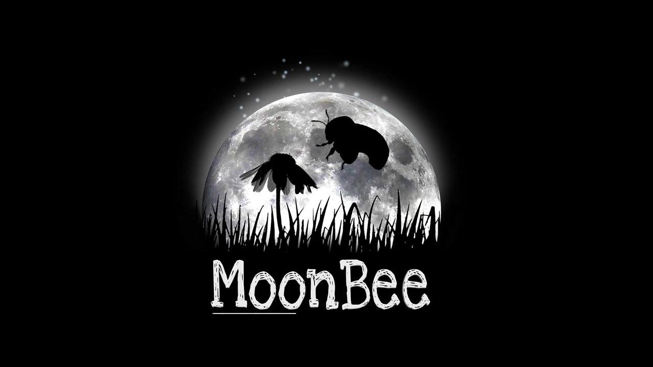 Moonbee anim 3d