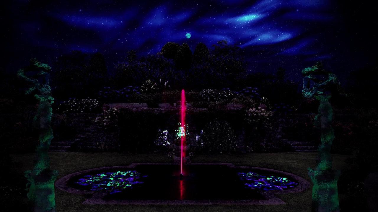 Amedeus Midnight Garden 2
