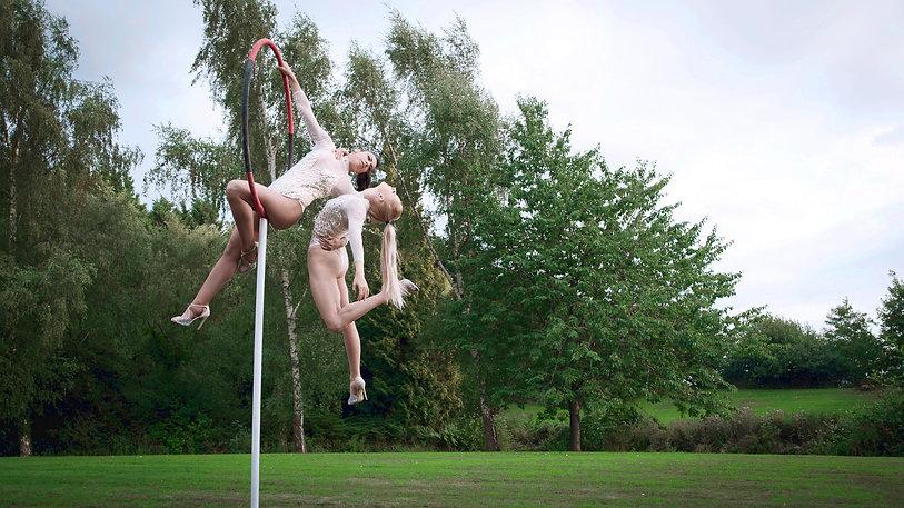 Deux Ailes Duo Freestanding Aerial