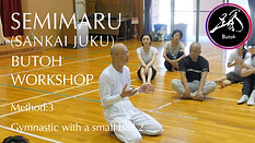 SEMIMARU workshop 3/100