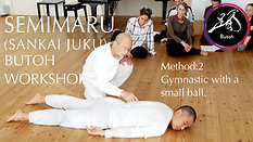 SEMIMARU Workshop 2/100