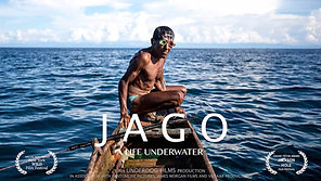 Jago - a Life Underwater
