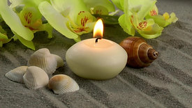 Candle orchid flowers on the sand