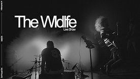 The Wldlfe - Repaint My Mind (Live)