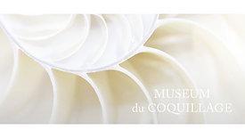 LE MUSEUM DU COQUILLAGE