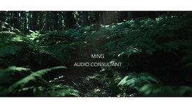MING - AUDIO CONSULTANT