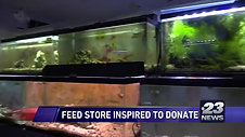 rockford video fish store