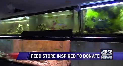 rockford video fish store