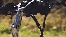 Versatile riding profiles