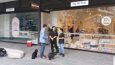 Baby Pet Studio Opening