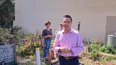 Save Erko Road Community Garden
