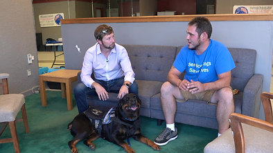 Guardian Service Dogs, Quality Service Dog Training for Veterans  // Episode 14