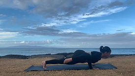 Strong arms with Chaturanga