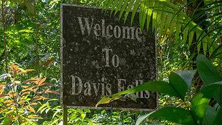 Davis Falls Adventure