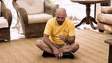 6. Comando DEITA - Como ensinar seu cão a deitar